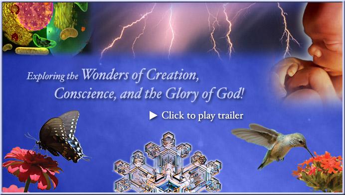 Dvd God of Wonders God of Wonders Video